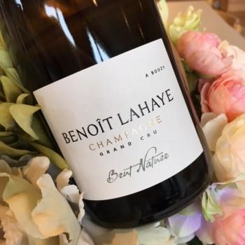 Benoit-Lahaye-Brut-Nature
